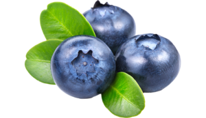 blueberries_PNG30