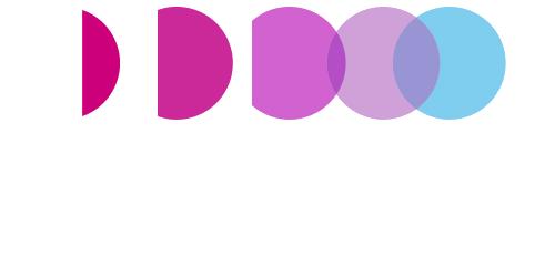 DLS Company